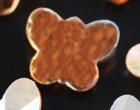 Papillon de boheme brillant 14 mm Champagne AB X 2