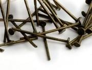 Tiges Clous à tête plate Noir 30x0.8mm  Qte : 20