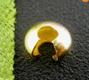 Perles à écraser  Doré 4mm X 20